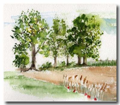 chapitre 12 les arbres l 39 ponge l 39 aquarelle est aujourd 39 hui l 39 une des. Black Bedroom Furniture Sets. Home Design Ideas