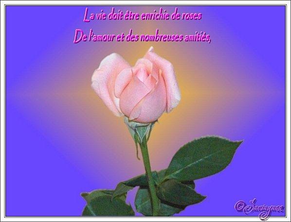 poeme du mardi ===bonne journée
