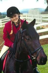 Cobalt le premier cheval de veronica grand galop - Grand galop le cheval volant ...