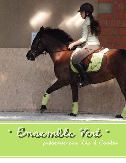 Article 20 de horsedressing ensemble vert un monde haut en couleur Tapis cheval vert pomme