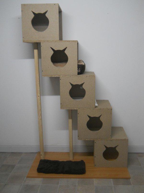 voici mon nouvel arbre chats fait maison en bois chatterie du paradis des petits d mons. Black Bedroom Furniture Sets. Home Design Ideas