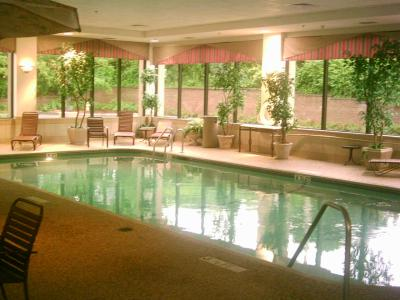 La piscine interieure de l 39 hotel wwill for Hotel nice piscine interieure