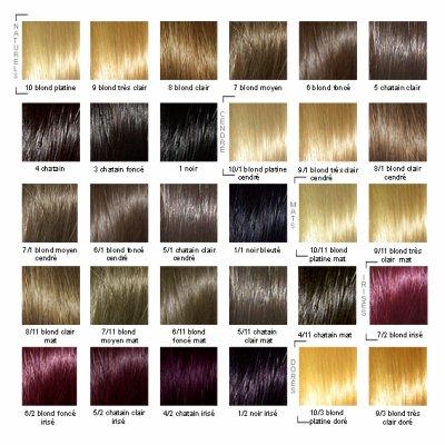 Coloration Couleur Coiffure En Image