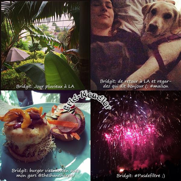 Brid' et les r�seaux sociaux: Twitter, Instagram dans le mois de Novembre