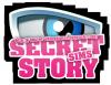 secret--storysims1