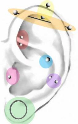Fiche piercing oreille body piercing for Interieur oreille