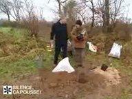 Planter les framboisiers ( F�vrier )