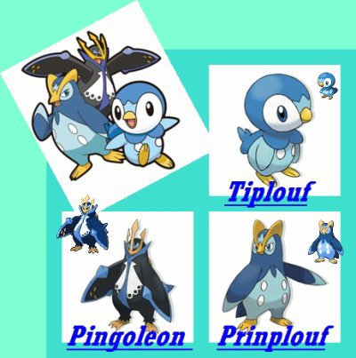Evolution de tiplouf pokemon les volutions - Evolution tiplouf ...
