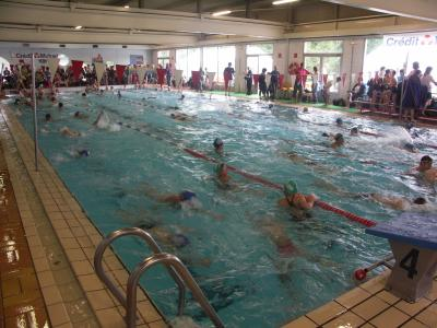 Blog de llsb natation page 11 l o lagrange for Adresse piscine schiltigheim
