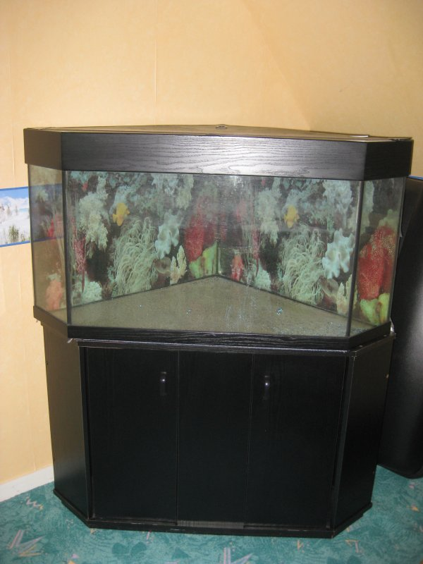 aquarium d 39 angle 200l meuble noir 2 porte vente de. Black Bedroom Furniture Sets. Home Design Ideas