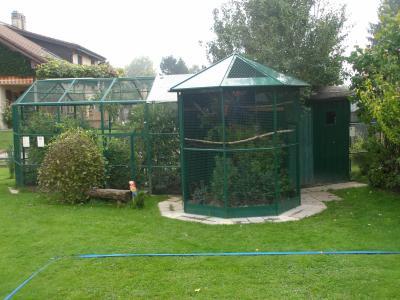 Voliere de jardin voliere jardin sur enperdresonlapin for Voliere exterieur occasion