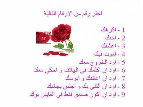 kalimat mo3abira - YouTube