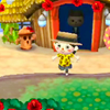 Photo de Astuces-ACNL