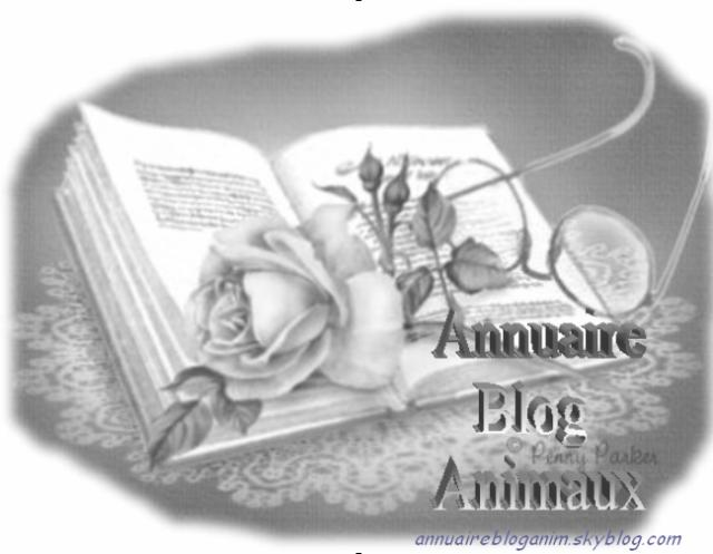 Annuairebloganim