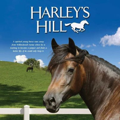 HARLEY'S HILL 2011