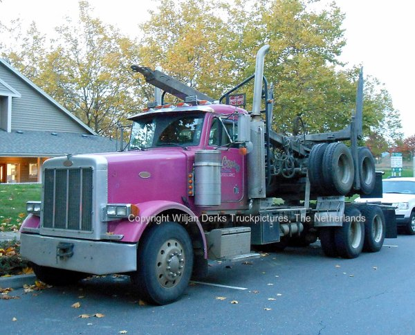 Peterbilt 378 Logging truck in Hillsboro, USA - American ...