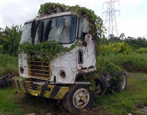 Truck CHEVY TITAN 90 avec Haulaway trailer Amt - Page 2 3203997465_1_2_YLAJZ4em