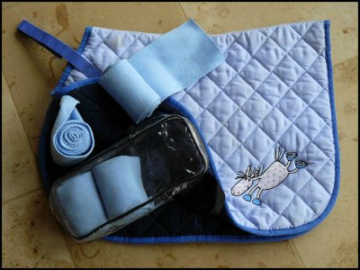 1 Tapis Bandes Bleu Ciel Poney Tout Mon Materiel D 39 Equitation A Vendre