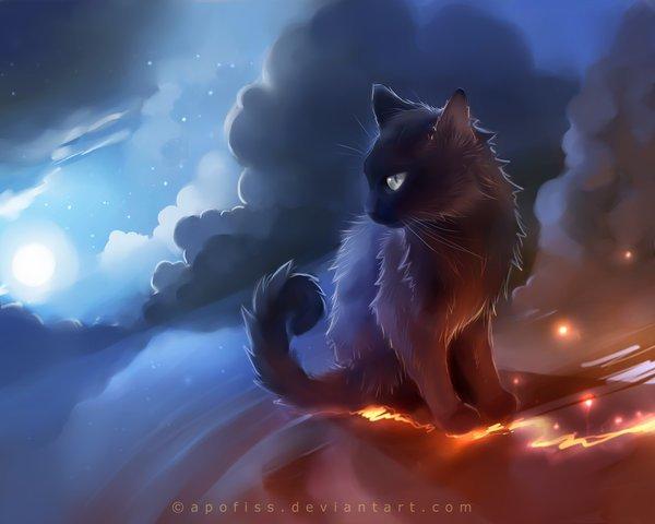 Le chat d'orage