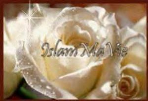 muslimacheulha70