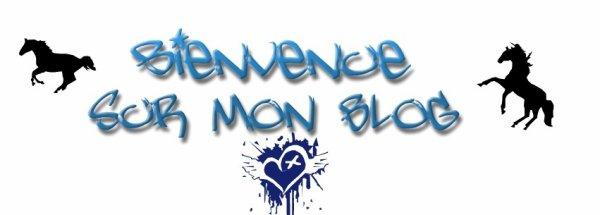 bonne visite et bienvenue sur mon blog ! ( photo changeante tout les dix com's )