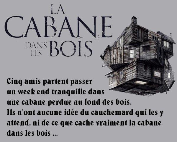Critique de film 3  La Cabane dans les bois  Graines De