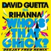 David guetta feat rihana - Who's That Chick (remix by deejay fred)