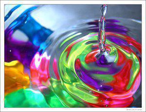 stefeincolor