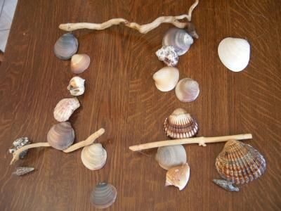 Blog de boisflotte page 2 realisations d 39 objets bois for Realisations en bois flotte