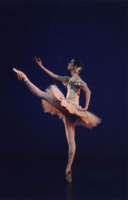 blog de la passion de la danse tout sur la danse classique. Black Bedroom Furniture Sets. Home Design Ideas