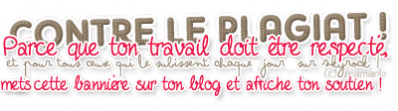 Pr�sentation du blog.