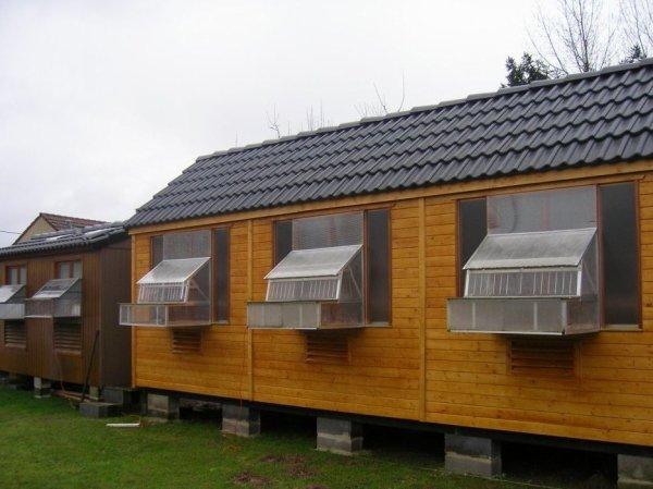 Pour les pigeonnier en bois renovertoitcage en boisdes for Ou trouver du bois flotte en belgique