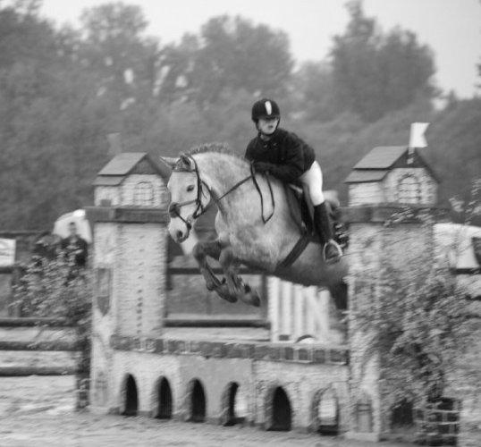 Blog de poney club val de saone poney club du val de for Jardin val de saone
