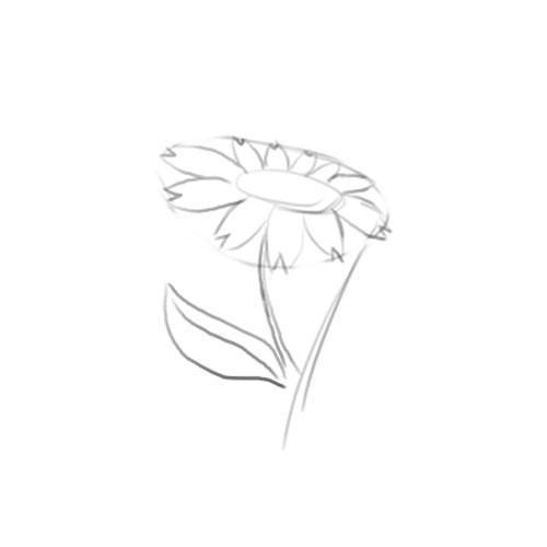Comment dessiner uen fleur blog de dessiner le manga - Fleure a dessiner ...