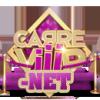 carreviiip-net