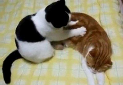 massage måløv tlf chat