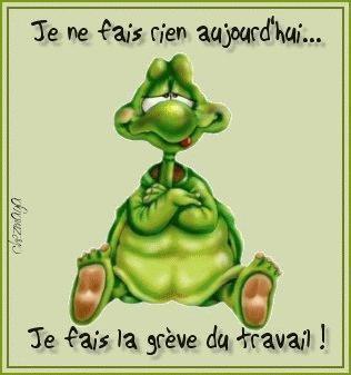 Tortue rigolote chez cyriane - Image tortue rigolote ...