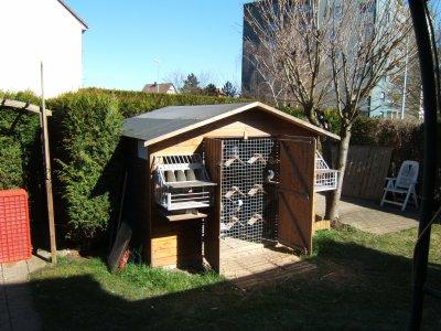 mon pigeonnier est un abri de jardin il habrite 50 pigeons qui se portent bien blog de. Black Bedroom Furniture Sets. Home Design Ideas