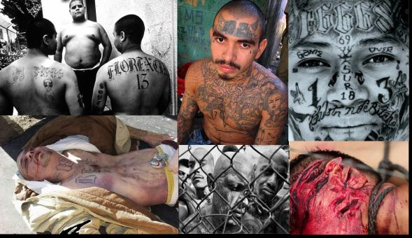 gangs behind the signs essay Essay database not a member yet gangs are becoming a growing problem in american society members fall behind their classmates in school and do not try.