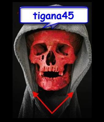 tigana45
