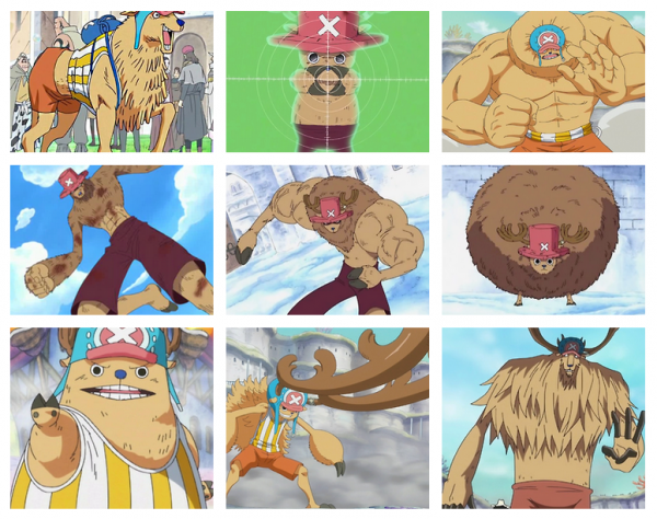 One Piece Chopper Transformations