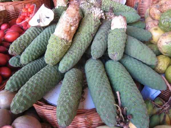 136 fruit exotique blog de alpeflor