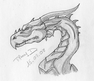 Tite t te de dragon pour commencer mes dessins et ce que j 39 aime - Dessin de tete de dragon ...