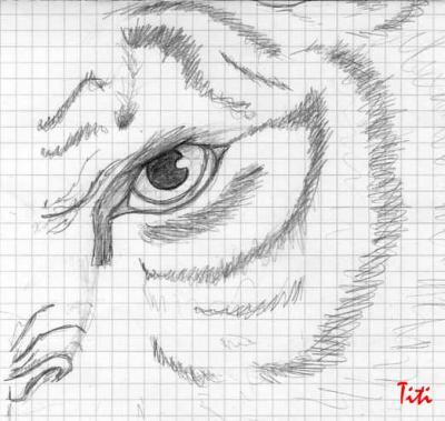 Demi face de tigre inventer mes dessins et ce que j 39 aime - Comment dessiner un tigre ...