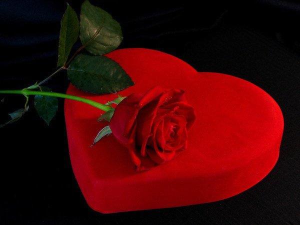 l fleur d 39 amour ou d 39 amitie l billiejean14 aimer en secret c 39 est souffrir. Black Bedroom Furniture Sets. Home Design Ideas