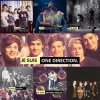 1d-repertoire-fiction13
