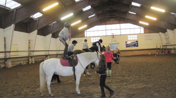 Equitation : mon 1er cours collectif