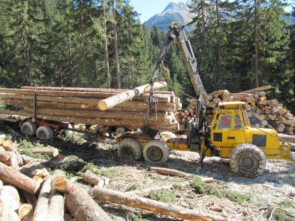 Porteur Cemet agrip qui reprend les bois � l' arriv�e de la ligne