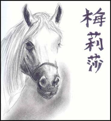cheval en chinois fan d 39 quitation. Black Bedroom Furniture Sets. Home Design Ideas