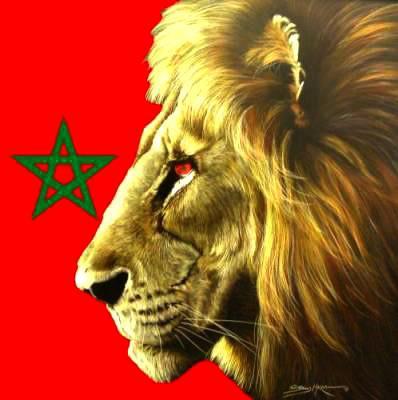 Les lions de l 39 atlas agadir v i p for Les salons de l atlas